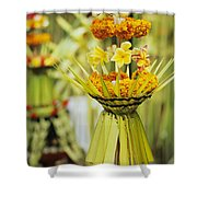 Balinese Ceremony Shower Curtain