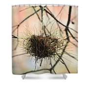 Ball Moss Shower Curtain