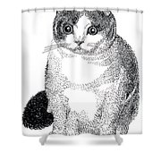 Ball Of Furry Fun Shower Curtain