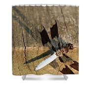 Ball Point Dragon Fly Shower Curtain