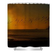 Ballet In The Golden Sunrise, Early Fall. Shower Curtain