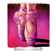Ballet Shoes  II Shower Curtain