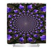 Balloon Flower Kaleidoscope Shower Curtain