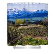 Balsamroot Flowers And North Cascade Mountains Shower Curtain