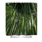 Bamboo 01 Shower Curtain