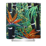 Bamboo And Birds Of Paradise Shower Curtain