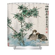 Bamboo And Chicken Shower Curtain