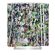 Bamboo Background In Nature Shower Curtain