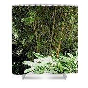 F8 Bamboo Shower Curtain