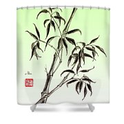 Bamboo Drawing  Shower Curtain