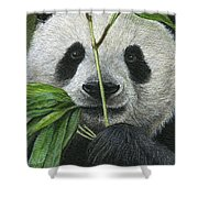 Bamboo Foodie Shower Curtain