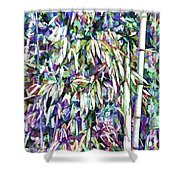 Bamboo Forest Background Shower Curtain