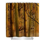 Bamboo Heaven Shower Curtain by Bedros Awak