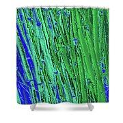Bamboo Johns Yard 21 Shower Curtain