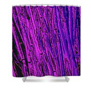 Bamboo Johns Yard 24 Shower Curtain