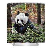 Bamboo Loving Shower Curtain
