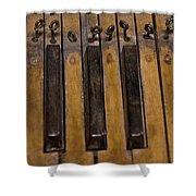 Bamboo Organ Keys Shower Curtain