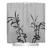 Bamboo Shutes Shower Curtain