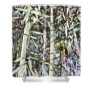 Bamboo Sprouts Forest Shower Curtain