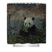 Bamboo Thats For Dinner Shower Curtain