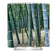 Bamboo Tree Forest, Close Up Shower Curtain