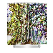 Bamboo Trees In Park Shower Curtain