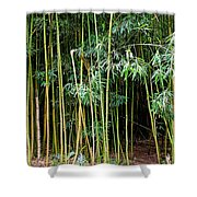 Bamboo Wind Chimes  Waimoku Falls Trail  Hana  Maui Hawaii Shower Curtain