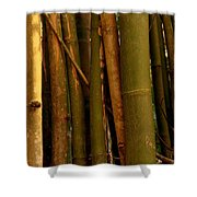 Bambusa Vulgaris Shower Curtain