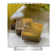 Banana Chocolate Shower Curtain