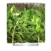 Banana Plantation Shower Curtain