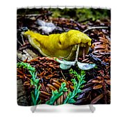 Banana Slug Shower Curtain