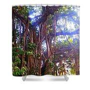 Banana Tree Shower Curtain