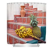 Bananas And Pineapple On Terracotta Steps Shower Curtain