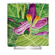 Bananas In October Shower Curtain