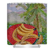 Bananas On A Plate Shower Curtain