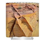 Band Of Gold In Valley Of Fire Shower Curtain