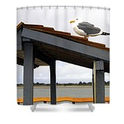 Bandon 3 Shower Curtain