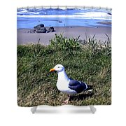 Bandon 37 Shower Curtain