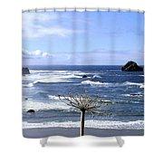 Bandon 63 Shower Curtain