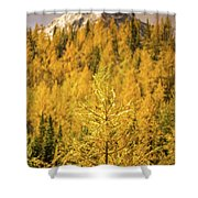 Banff Golden Larch Dream World Shower Curtain