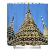 Bangkok, Wat Po Shower Curtain