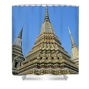 Bangkok, Wat Po Shower Curtain