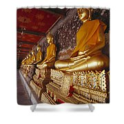 Bangkok, Wat Suthat Shower Curtain