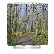 Banks Of Loch Lomond, Scotland Shower Curtain