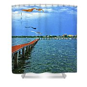 Banners Flying Shower Curtain