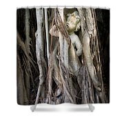 Banyan Grows Over Statue Shower Curtain