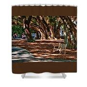 Banyans - Marie Selby Botanical Gardens Shower Curtain