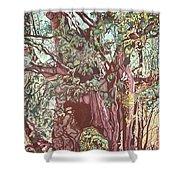 Baoba In Foliage Shower Curtain