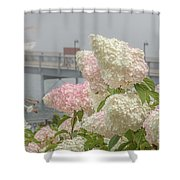 Bar Harbor Flowers In The Fog Shower Curtain