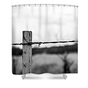 Barb-wire Fence Shower Curtain